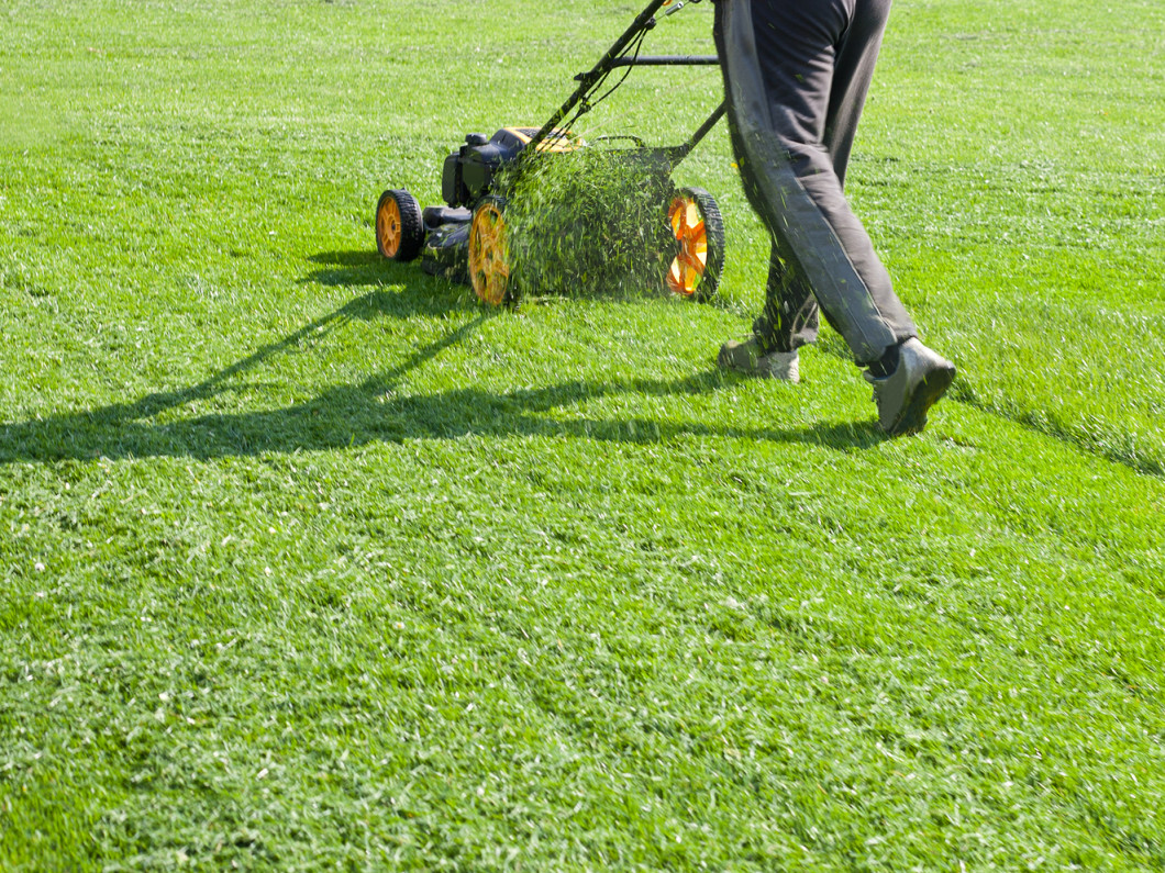 Residential Lawn Care & Landscaping